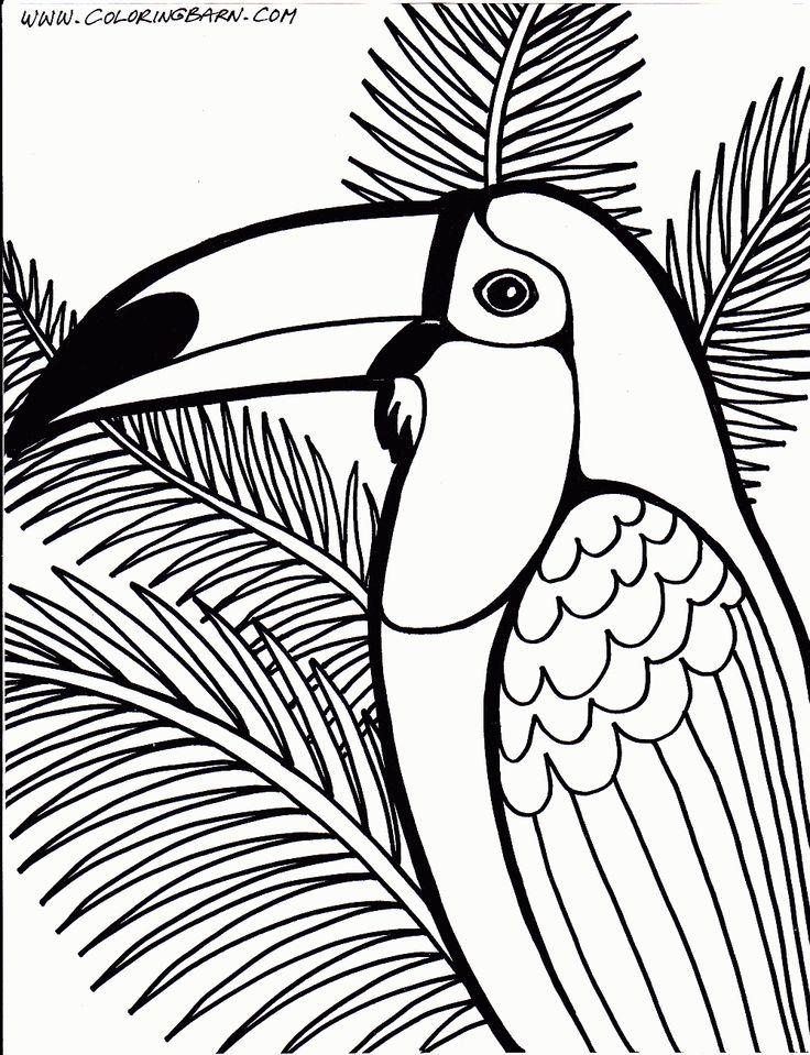 Toucanet coloring #17, Download drawings