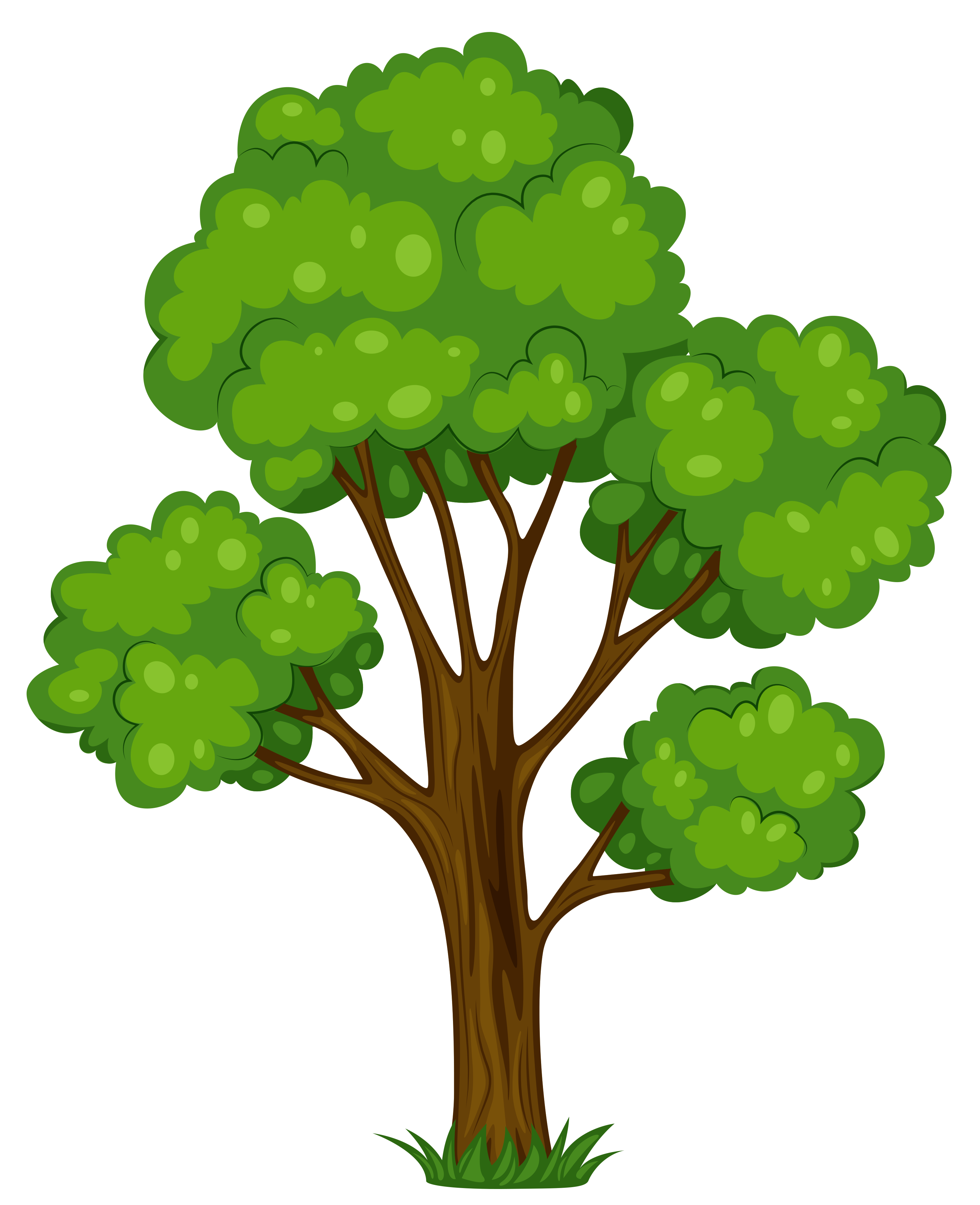 Tree clipart #4, Download drawings