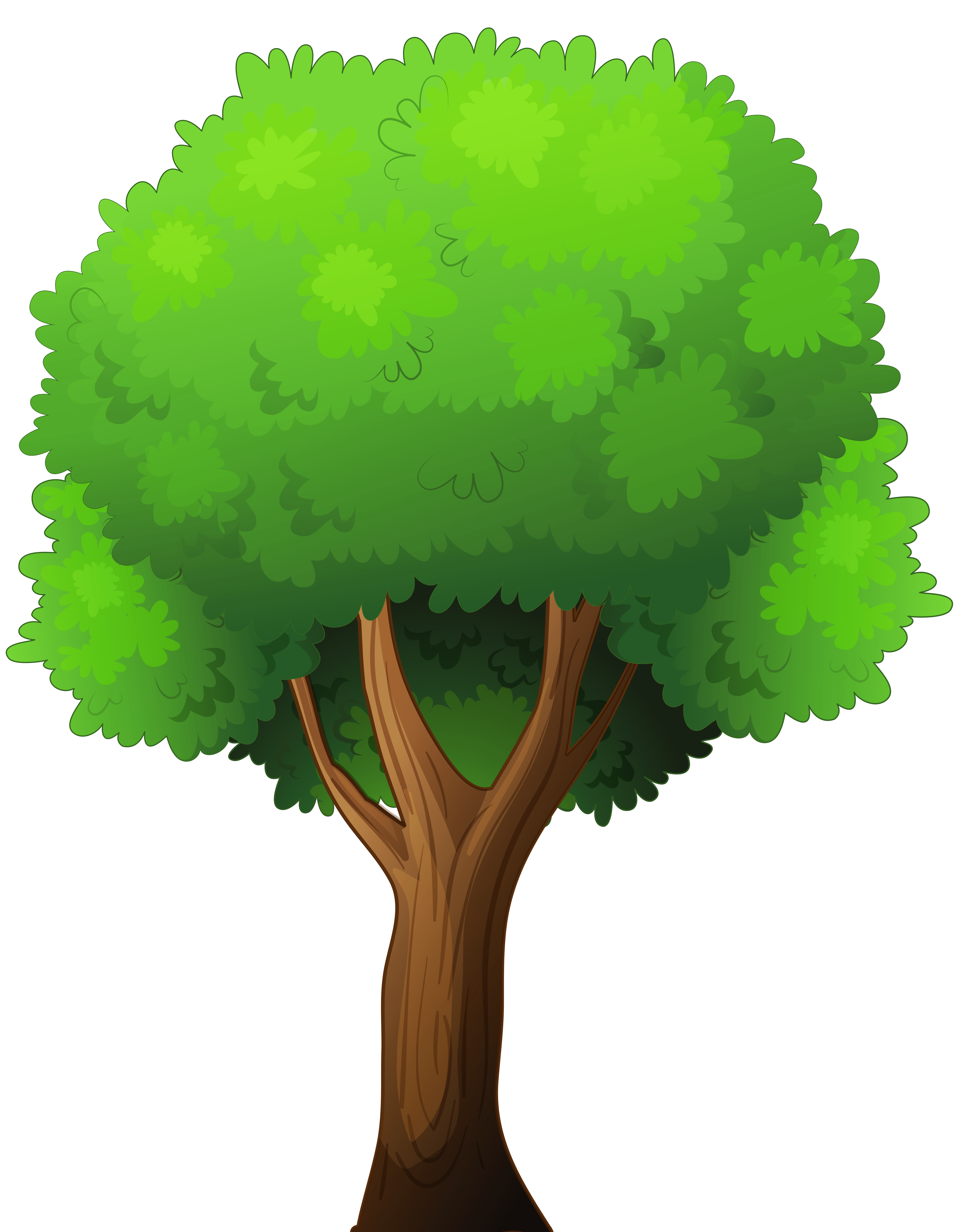 Tree clipart #7, Download drawings