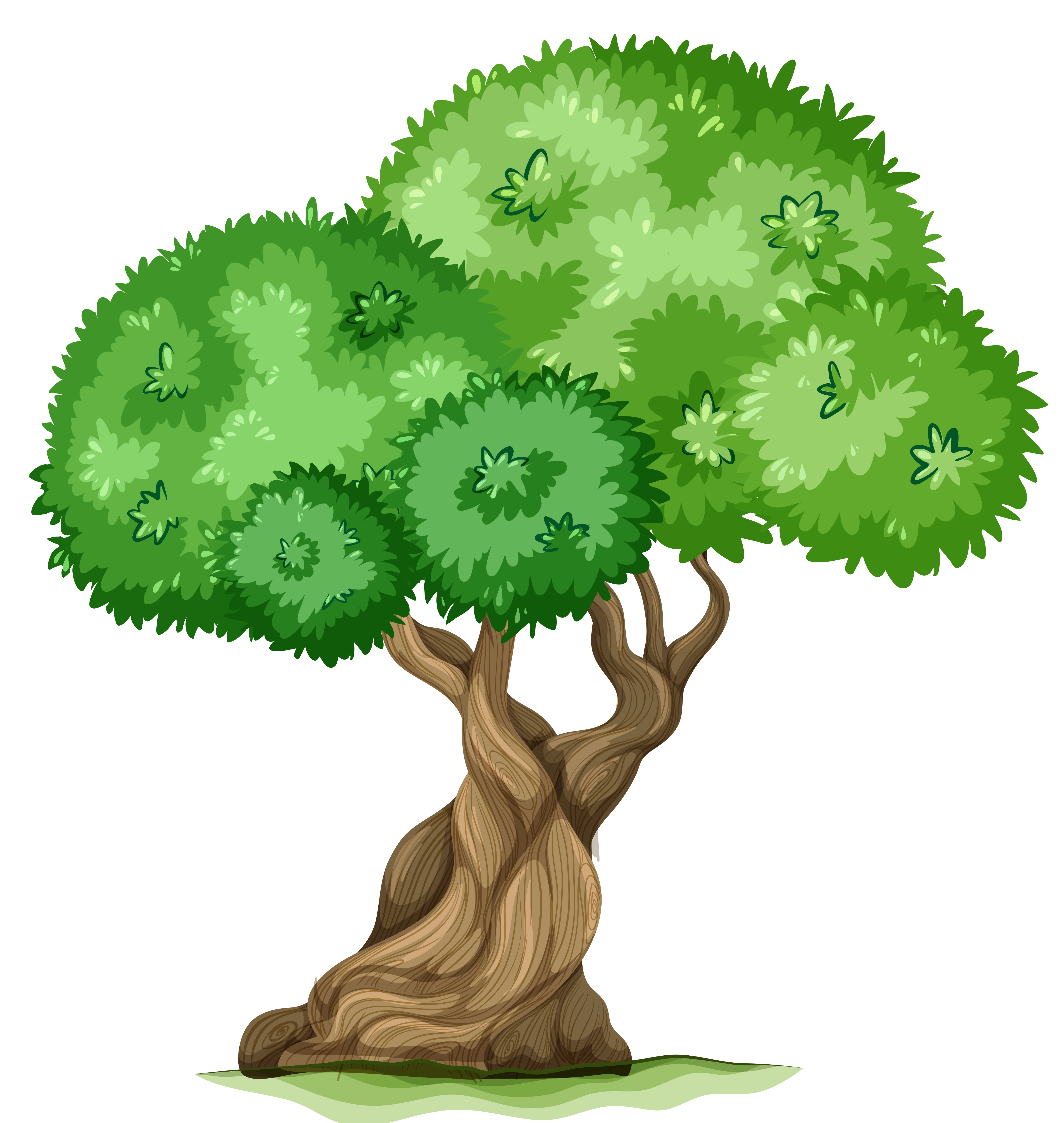 Tree clipart #3, Download drawings