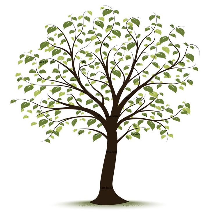 Tree clipart #18, Download drawings