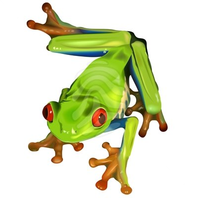 Tree Frog clipart #19, Download drawings