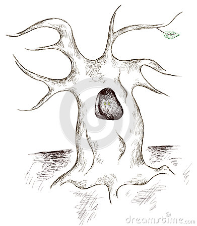 Tree Hollow clipart #9, Download drawings