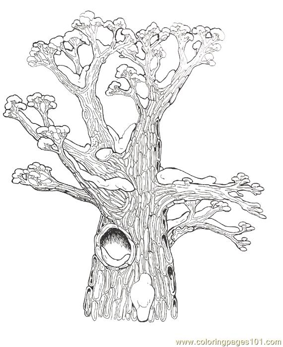 Tree Hollow coloring #19, Download drawings