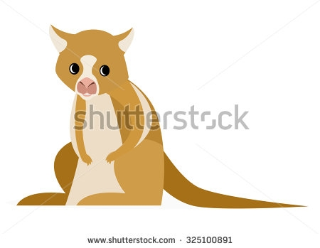 Tree Kangaroo clipart #12, Download drawings