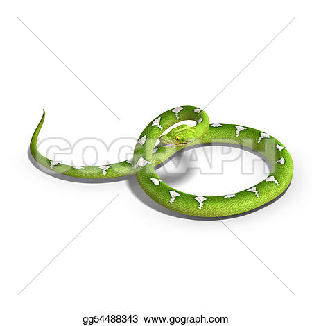 Tree Python clipart #5, Download drawings