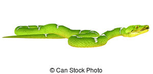 Tree Python clipart #20, Download drawings