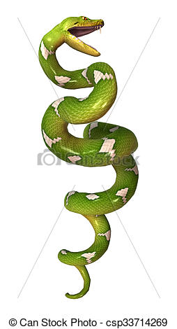 Tree Python clipart #11, Download drawings