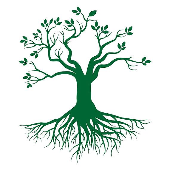 Tree Root svg #9, Download drawings