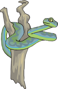 Tree Snake clipart #16, Download drawings