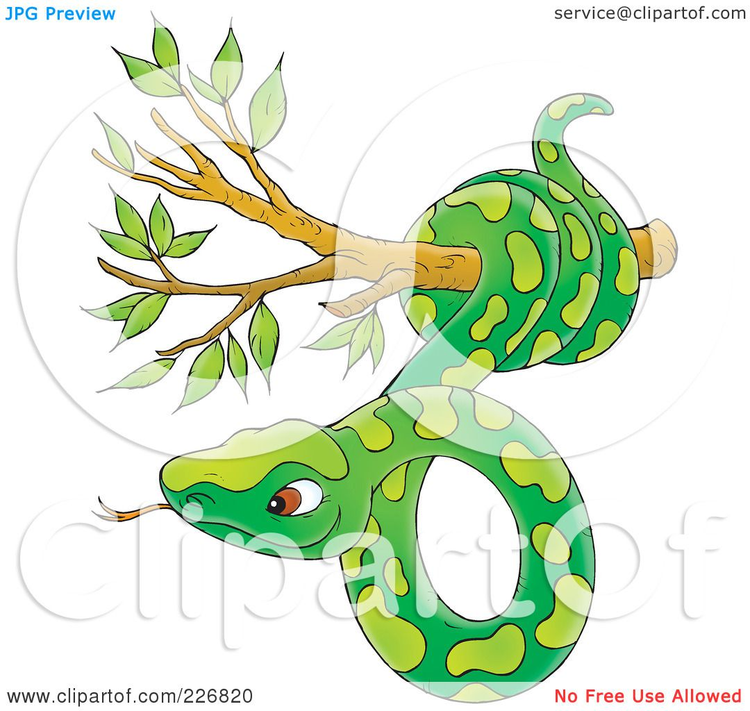 Tree Snake clipart #9, Download drawings