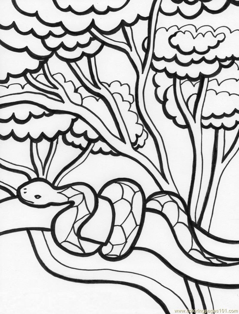 Tree Snake coloring #8, Download drawings