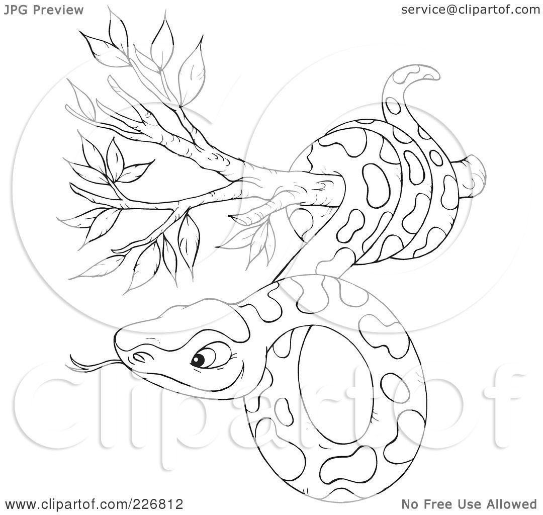 Tree Snake coloring #17, Download drawings