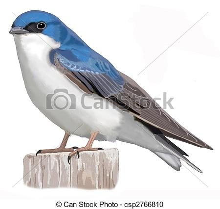 Tree Swallow clipart #19, Download drawings