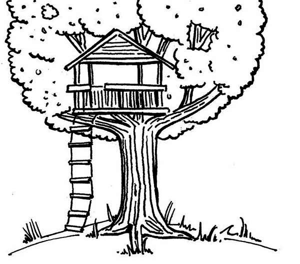 Treehouse coloring #16, Download drawings