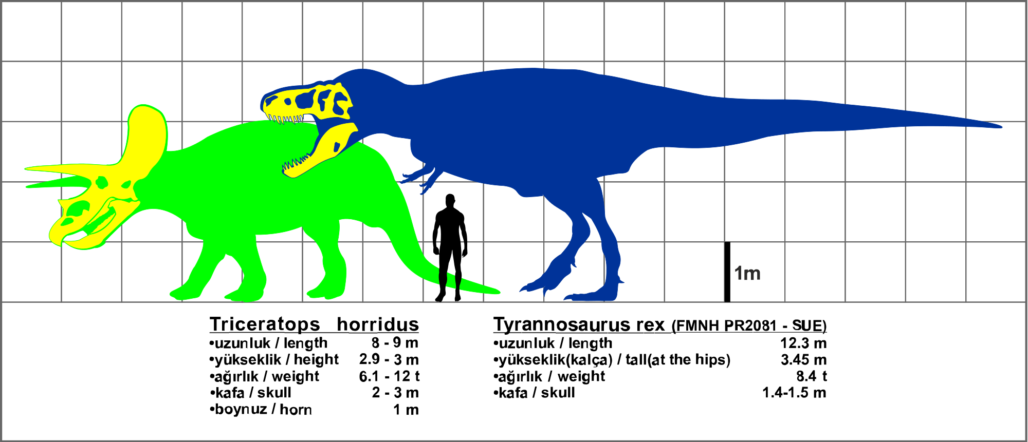 Triceratops svg #12, Download drawings