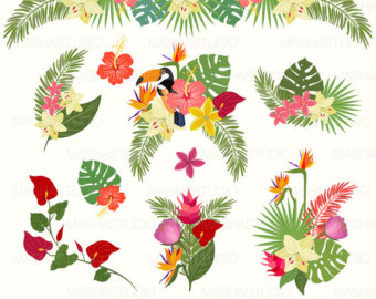 Tropical clipart #14, Download drawings