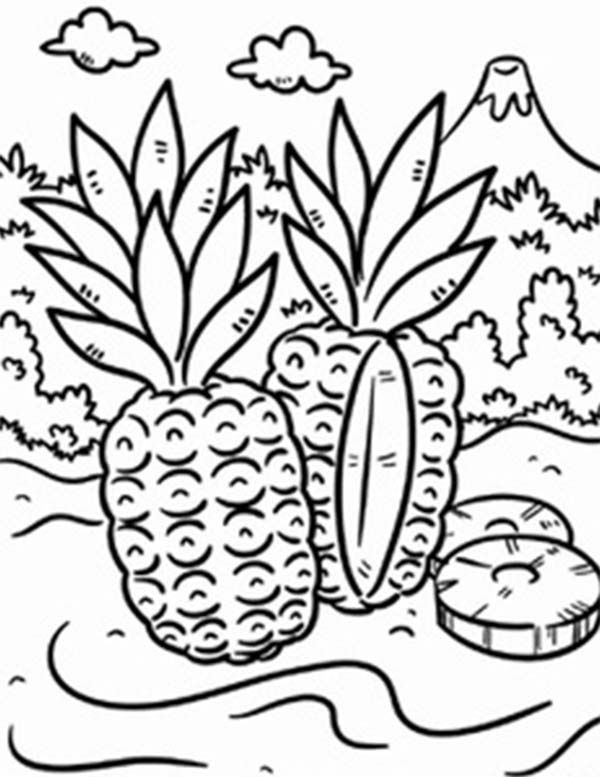 Tropical coloring book pages ~ Tropical coloring, Download Tropical coloring for free 2019