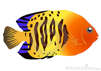 Tropical Fish clipart #6, Download drawings
