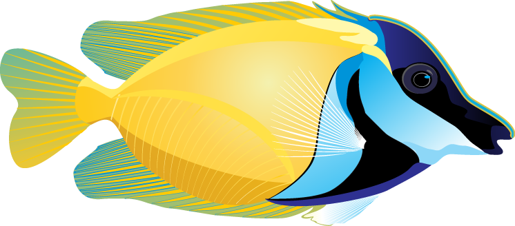Tropical Fish clipart #12, Download drawings