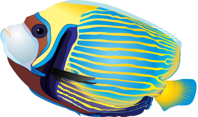 Tropical Fish clipart #20, Download drawings