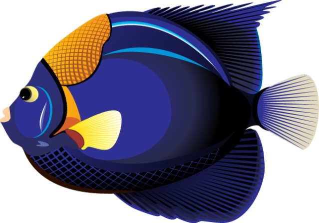 Tropical Fish clipart #17, Download drawings