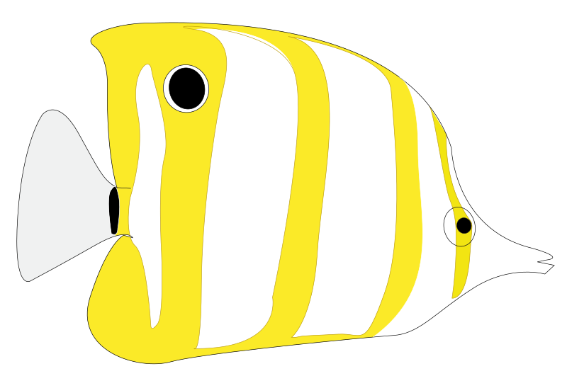 Tropical Fish svg #15, Download drawings