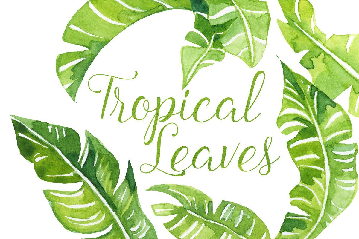 Tropics clipart #11, Download drawings