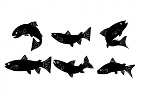 Trout svg #12, Download drawings