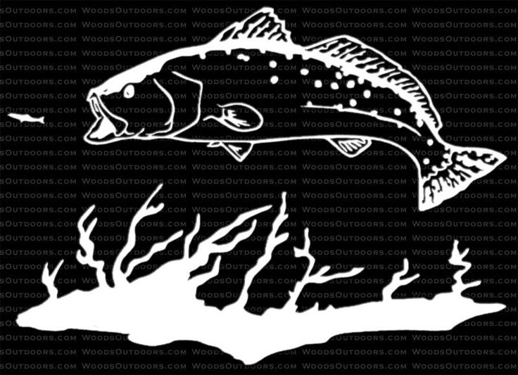 Trout svg #4, Download drawings