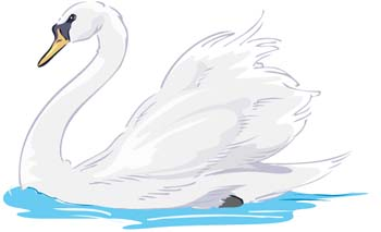 Tundra Swan clipart #15, Download drawings