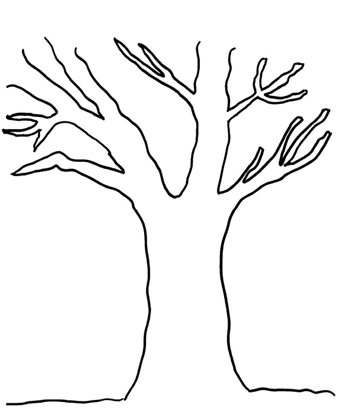 Naked Tree coloring, Download Naked Tree coloring for free ...