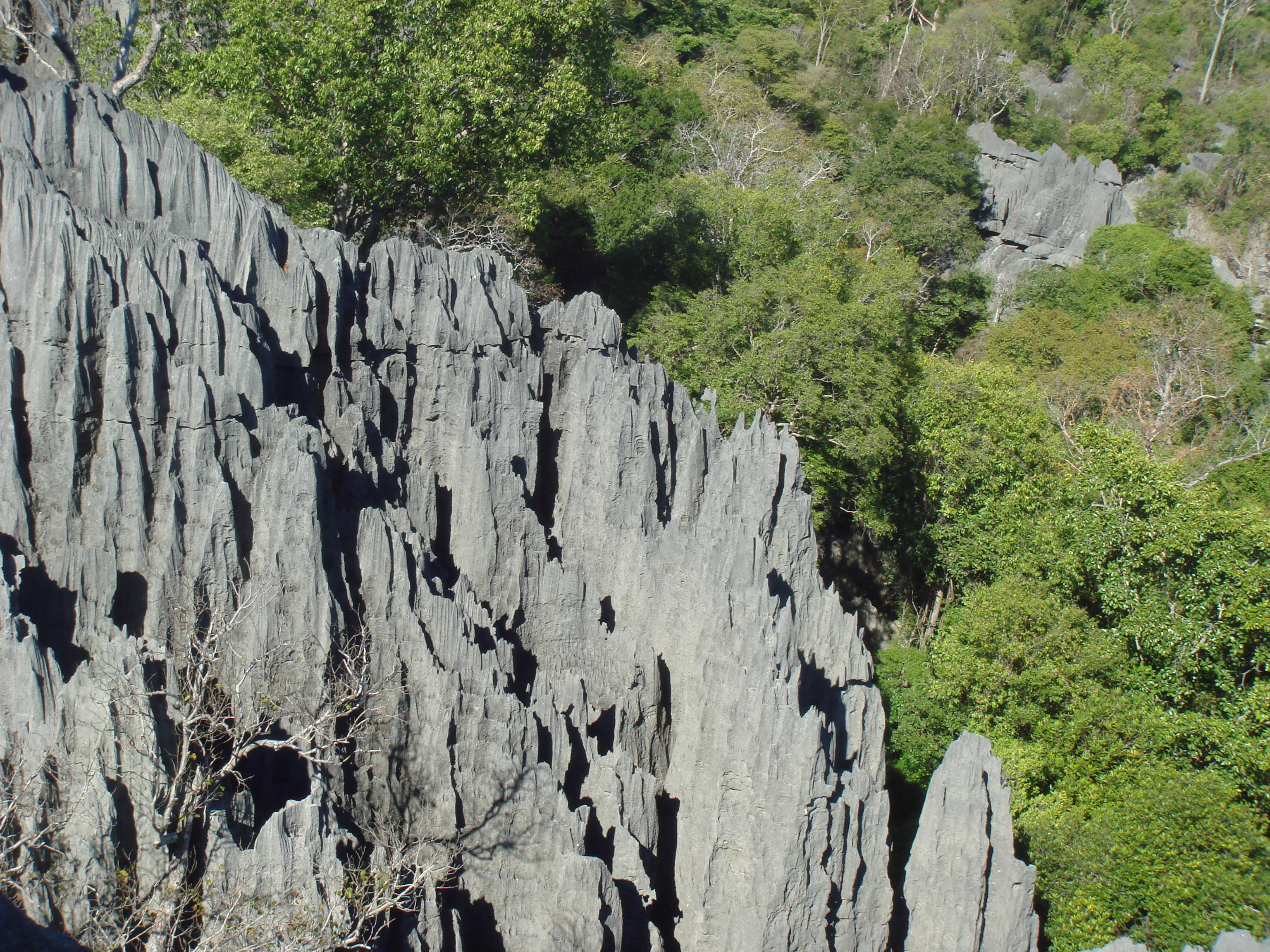 Tsingy De Bemaraha National Park svg #8, Download drawings
