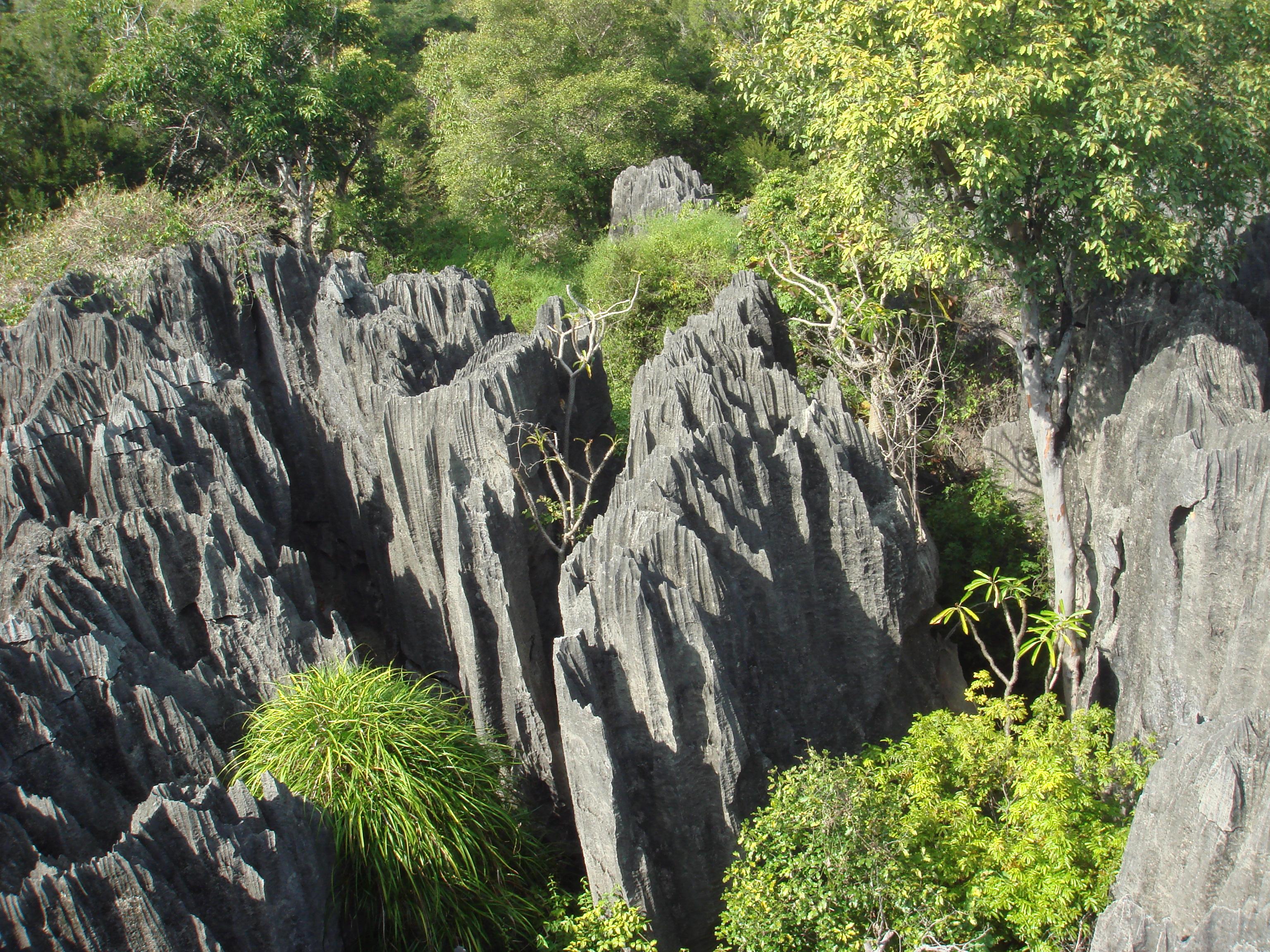 Tsingy De Bemaraha National Park svg #2, Download drawings