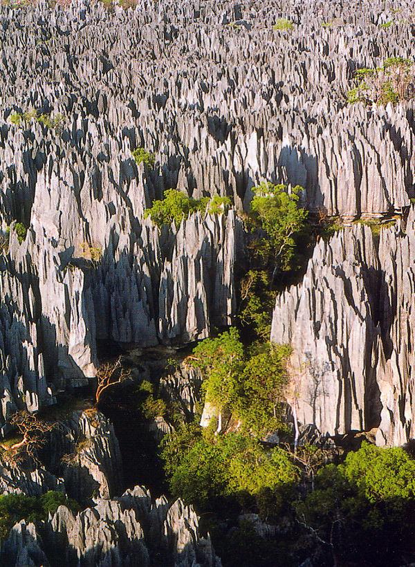 Tsingy De Bemaraha National Park svg #18, Download drawings