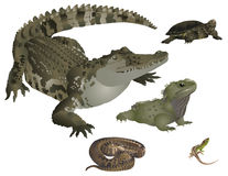Tuatara clipart #14, Download drawings