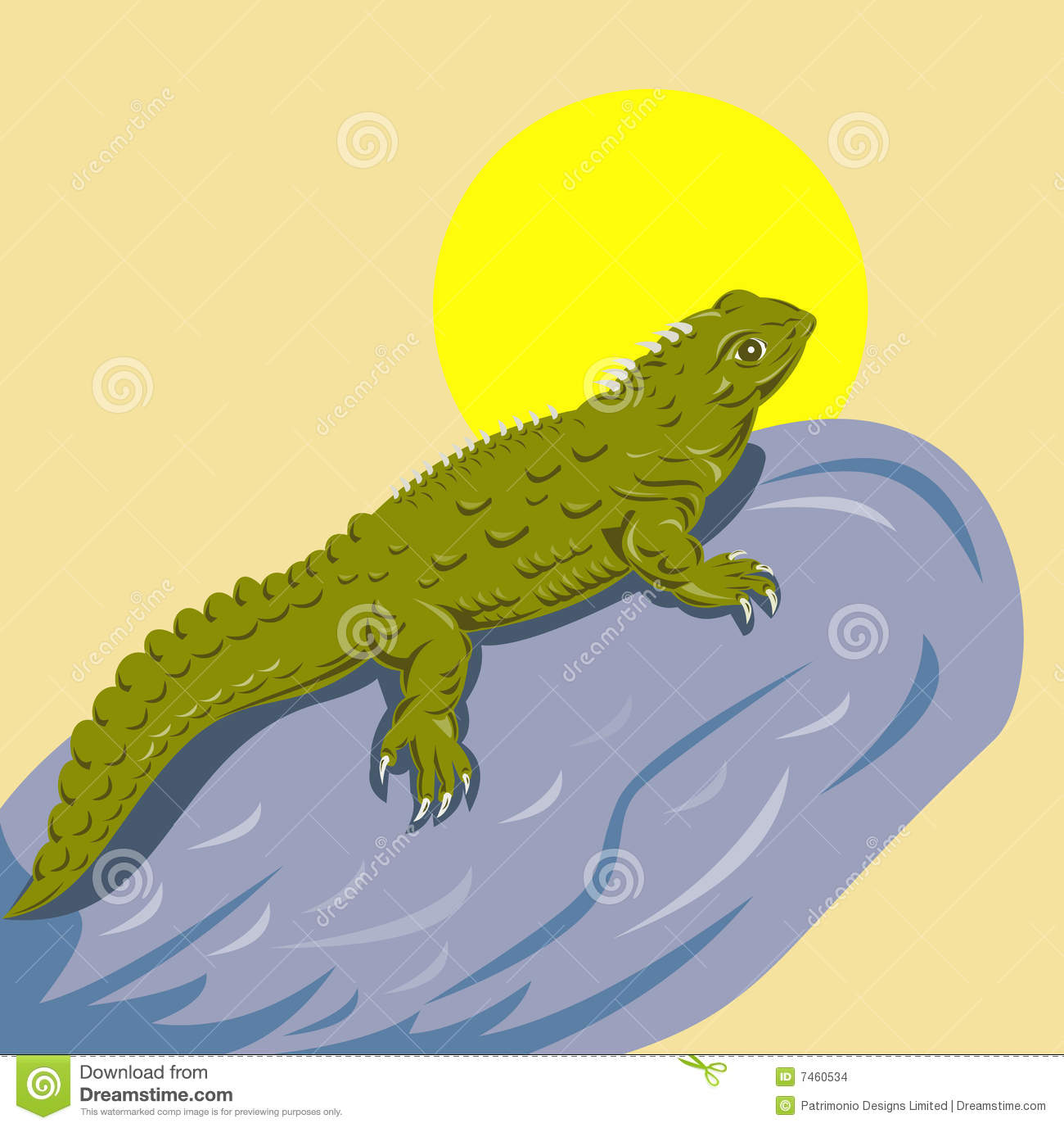 Tuatara clipart #19, Download drawings