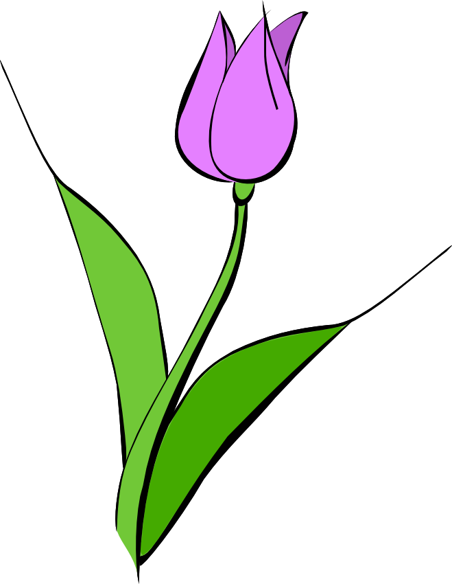 Tulip clipart #6, Download drawings