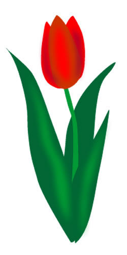 Tulip clipart #13, Download drawings
