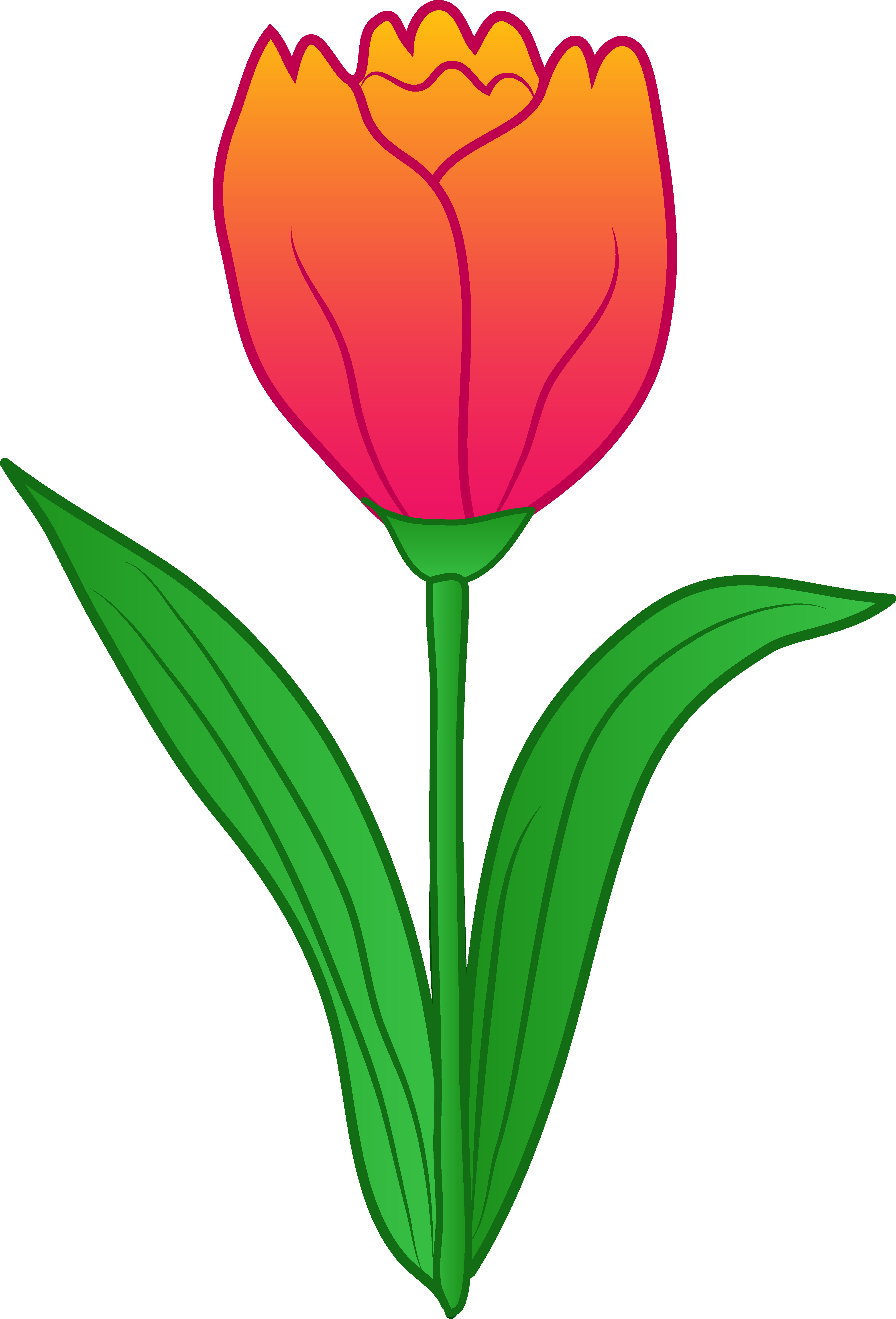 Tulip clipart #4, Download drawings