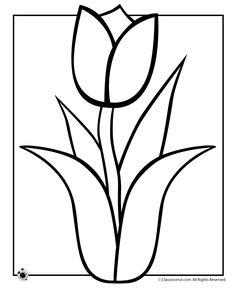 Tulip coloring #3, Download drawings