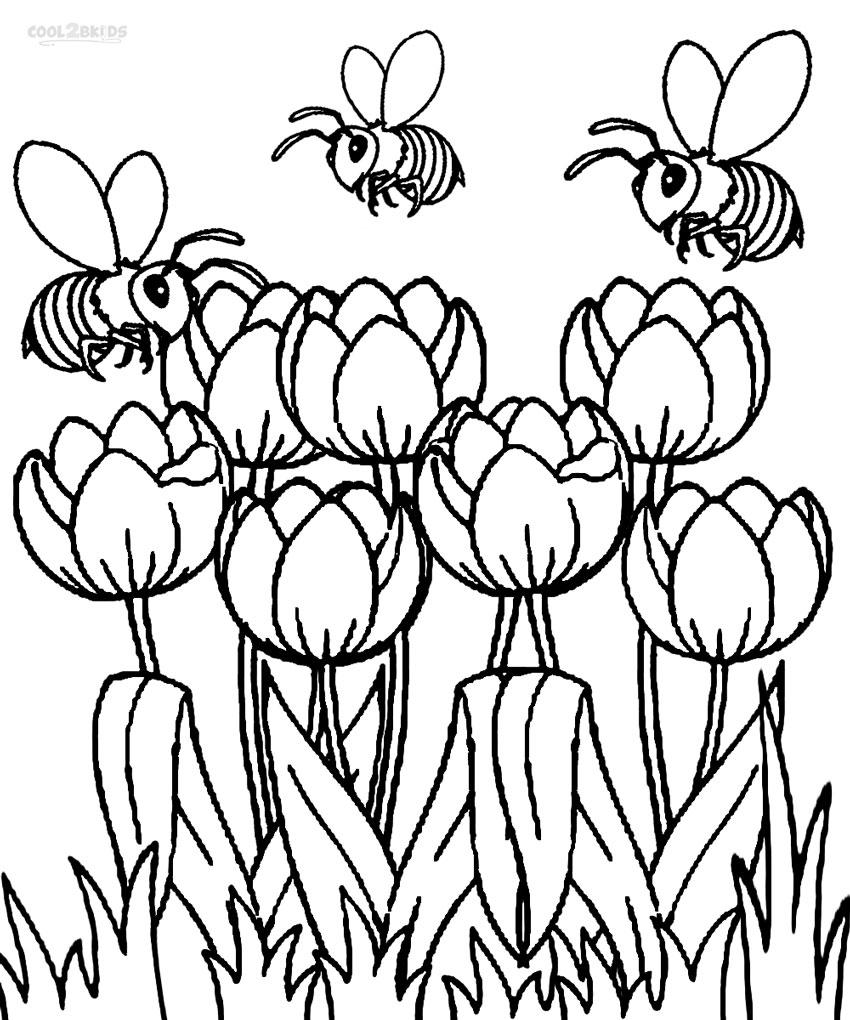 Tulip coloring #15, Download drawings