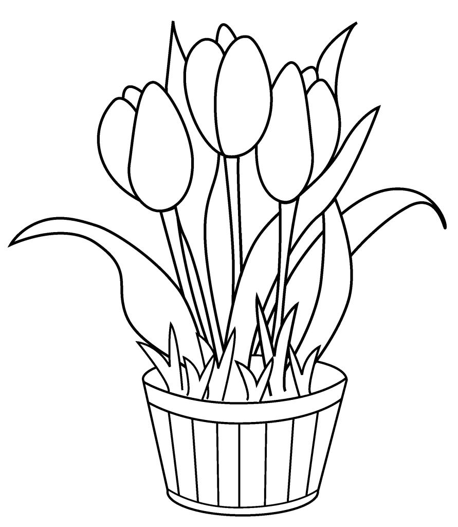 Tulip coloring #16, Download drawings