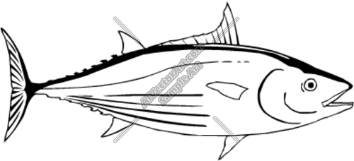 Tuna clipart #14, Download drawings