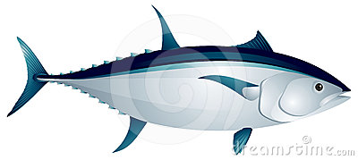 Tuna clipart #19, Download drawings