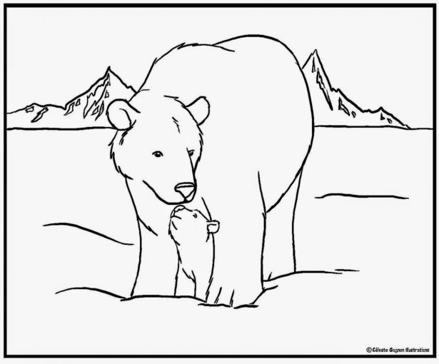 Tundra coloring download tundra coloring for Tundra animals coloring pages