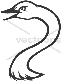 Tundra Swan clipart #17, Download drawings