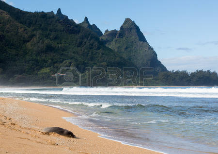 Tunnels Beach clipart #13, Download drawings