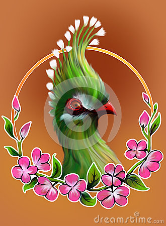 Turaco clipart #2, Download drawings
