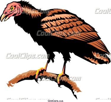 Turkey Vulture clipart #2, Download drawings